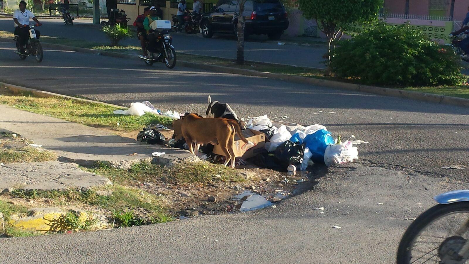 , Falta de contenedores  para  basura constituyen un peligro de salud pública en Barahona