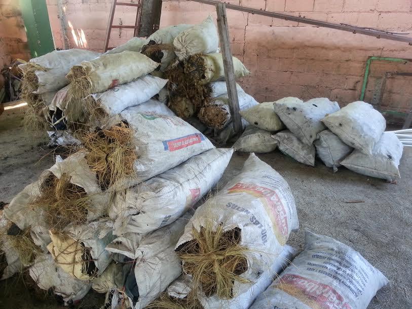 , Ambiente decomisa 130 Sacos de Carbón Vegetal en Barahona