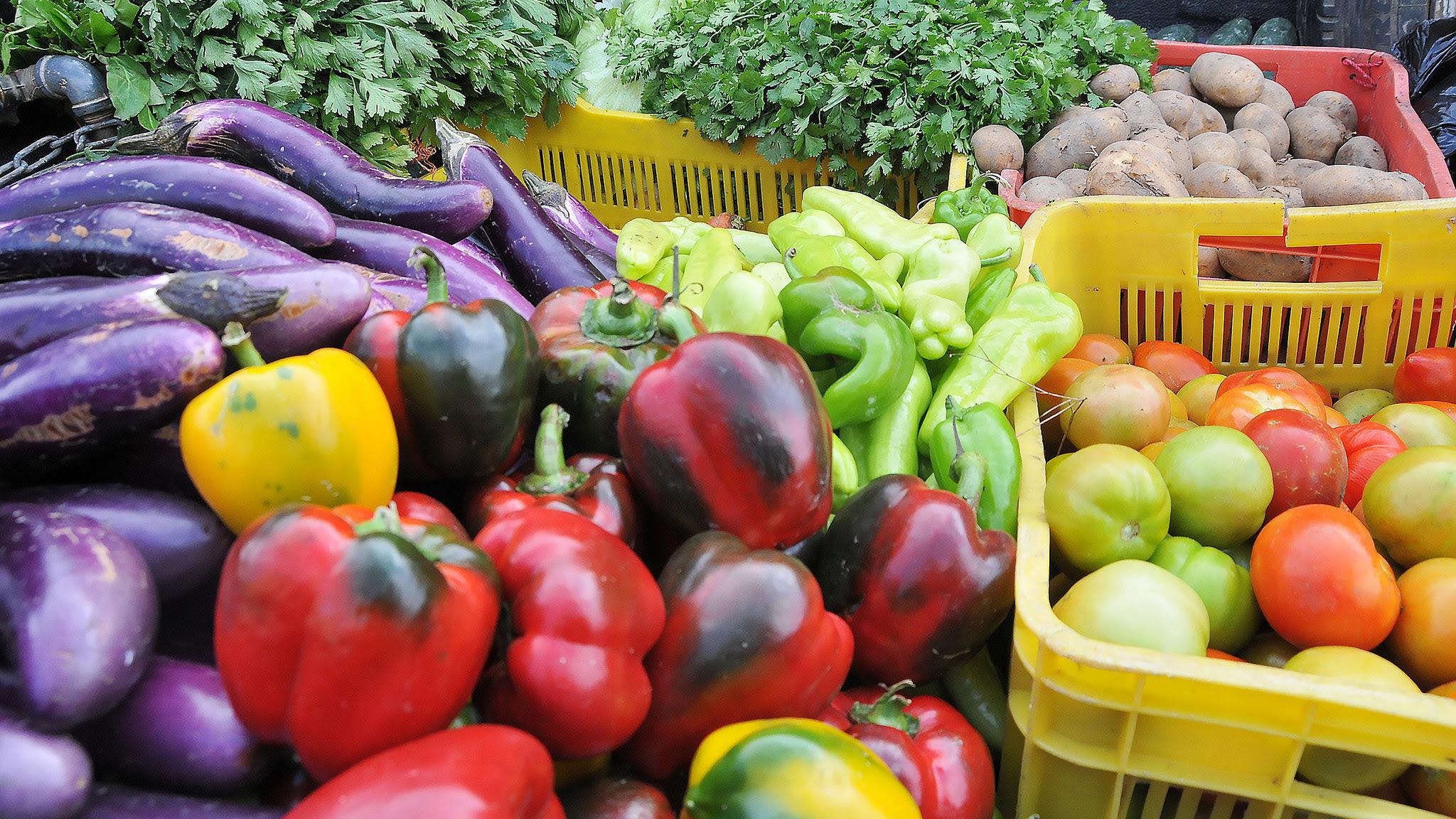 , Estados Unidos levanta restricciones a exportaciones frutas y vegetales de República Dominicana