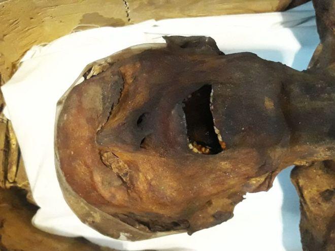 """, Aseguran haber resuelto el misterio de la """"momia que grita"""", hallada hace más de 100 años"""