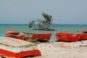 , Barahona y gobiernos locales a espalda del turismo sustentable