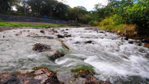 , Gobierno de Danilo celebra Día Mundial del Agua todo el año con reforestación zonas montañosas