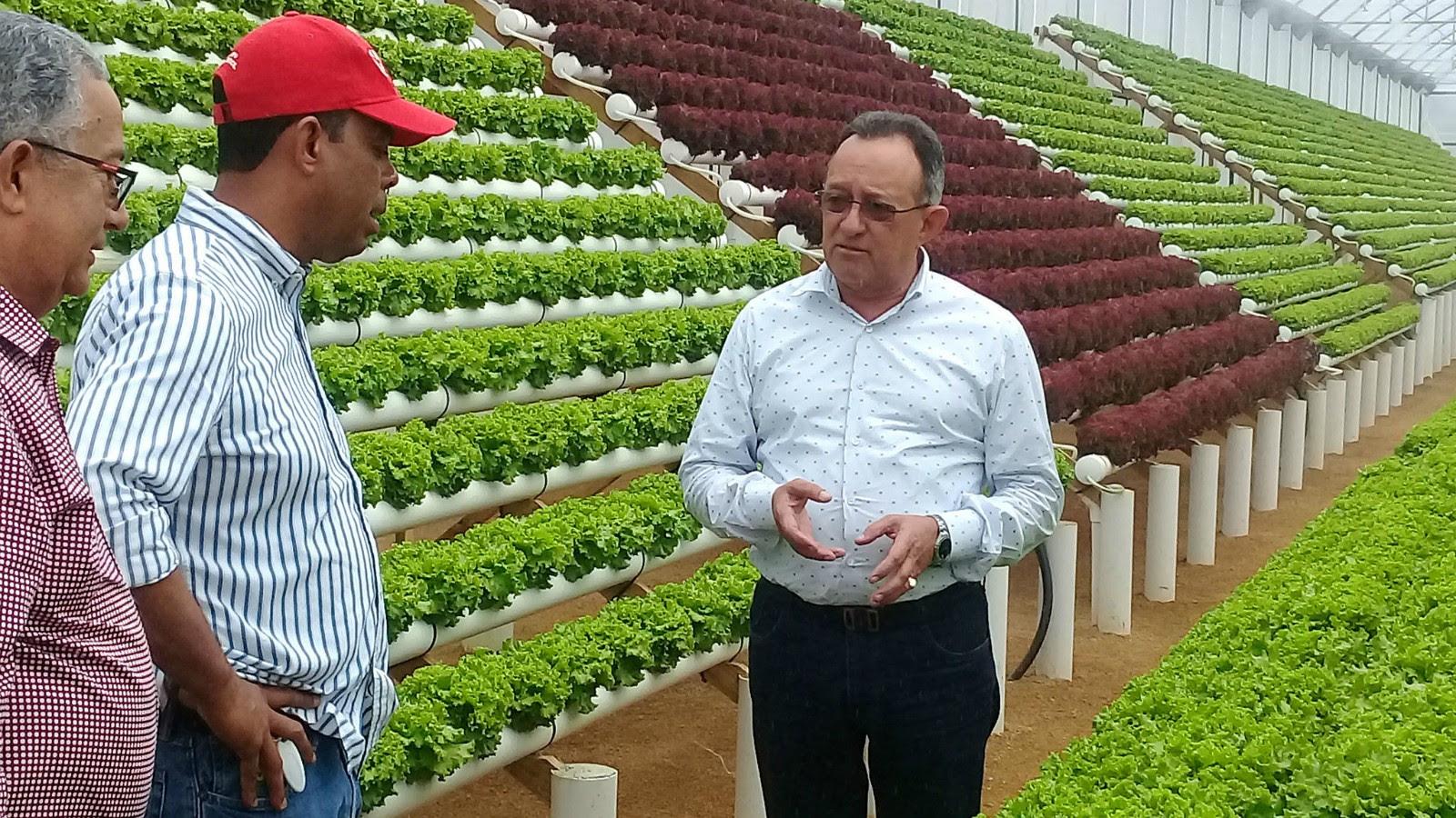 , Implementa medidas preventivas para garantizar producción de vegetales en Rancho Arriba