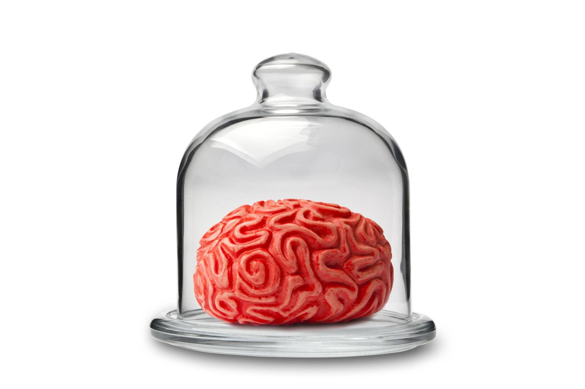 , Si el cerebro necesita azúcar para funcionar, ¿por qué tenemos que dejar de comerlo?