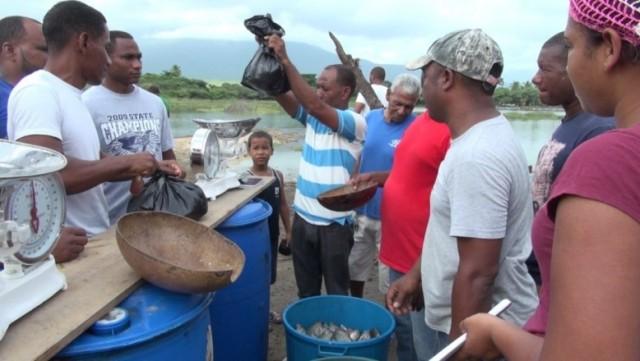 Proyecto crianza de peces en la Laguna Cabral