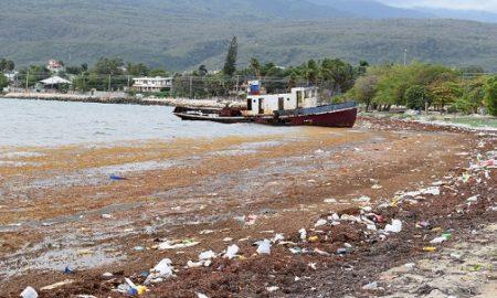 Las Algas llegaron temprano a Barahona