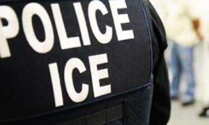 Dominicano le arranca de un mordisco dedo de un agente migratorio en El Bronx