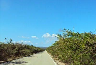 Carreteras de la región sur carecen de señalización de tránsito