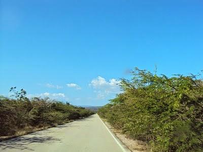 , Carreteras de la región sur carecen de señalización de tránsito