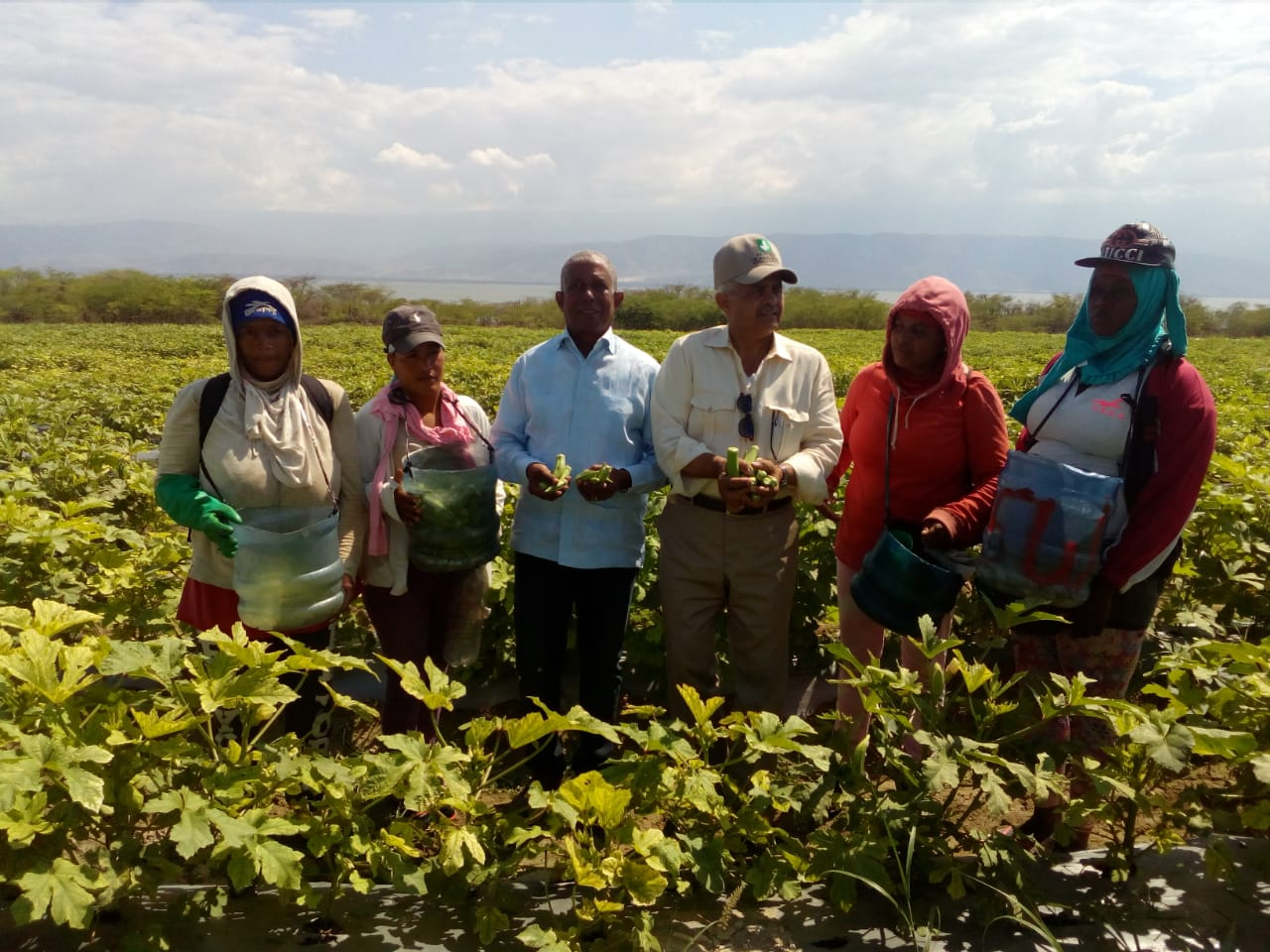 Uva Red Globe en el Valle de Neiba., Ministro de Agricultura Osmar Benítez anuncia el cultivo de Dos Mil tareas de Uva Red Globe en el Valle de Neiba.