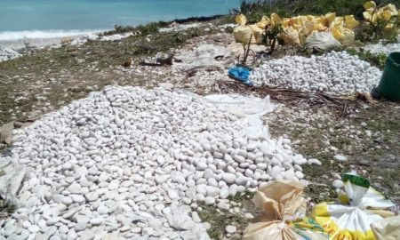 Vuelve a extraer piedras chatas y bolas de las playas en la costa de Barahona