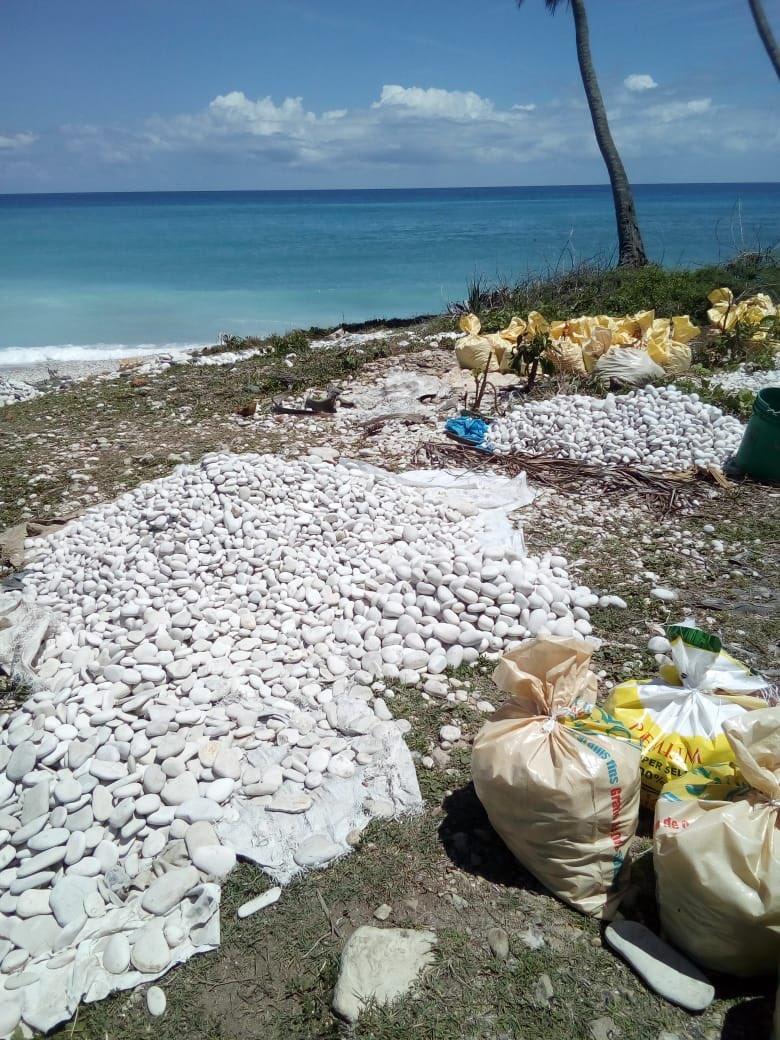 , Vuelve a extraer piedras chatas y bolas de las playas en la costa de Barahona