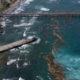 Sargazo afecta y limita producción de electricidad Itabo