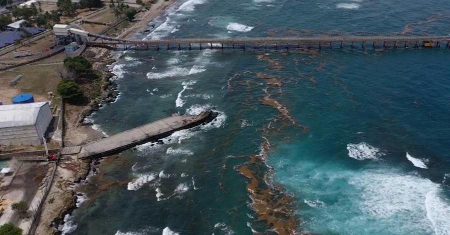 , Sargazo afecta y limita producción de electricidad Itabo
