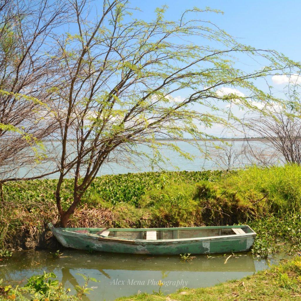 , Sequía y mal manejo estatal comprometen la vida de la reserva científica Laguna De Cabral.