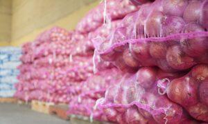 , Inespre vende más de 6 mil quintales de cebolla a 10 pesos la libra
