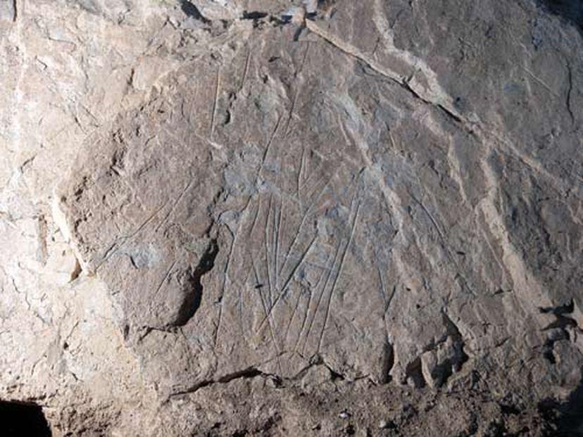 , Una mujer enterrada con honores hace 19.000 años con misteriosas bacterias