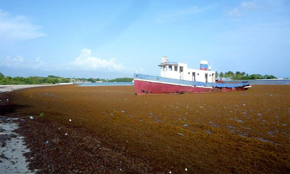 , CAC agradece apoyo del pueblo Barahona en operativo limpieza de algas